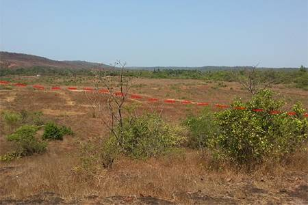 Upcoming Project Plot at Sateli Maharashtra